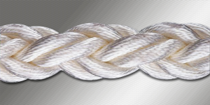 Braided Learning with MOOCs and corporate learning